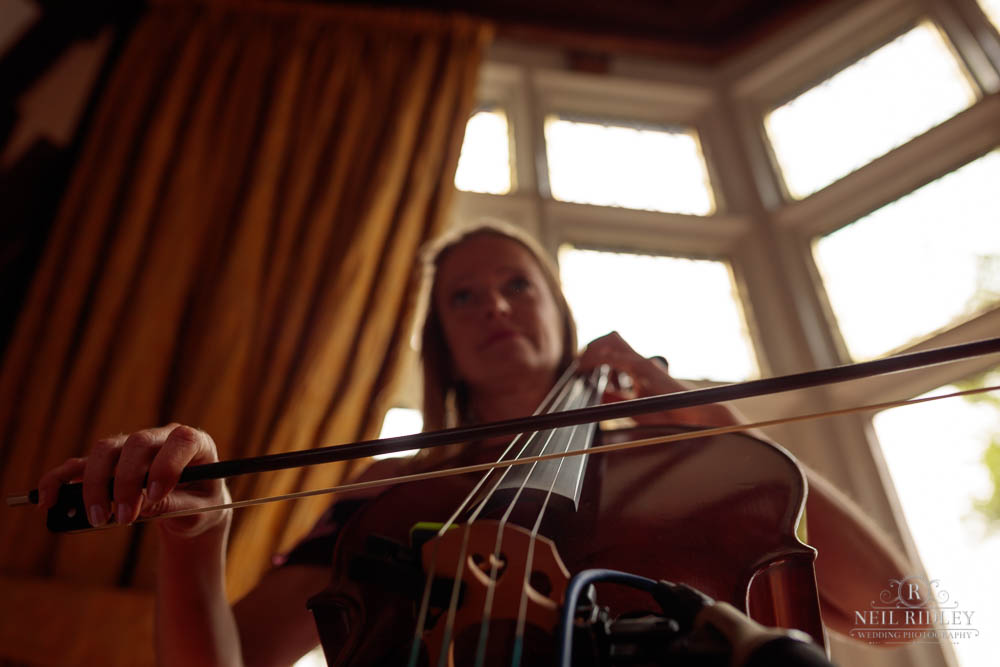 Cellist plays at a Wedding at Chester Zoo