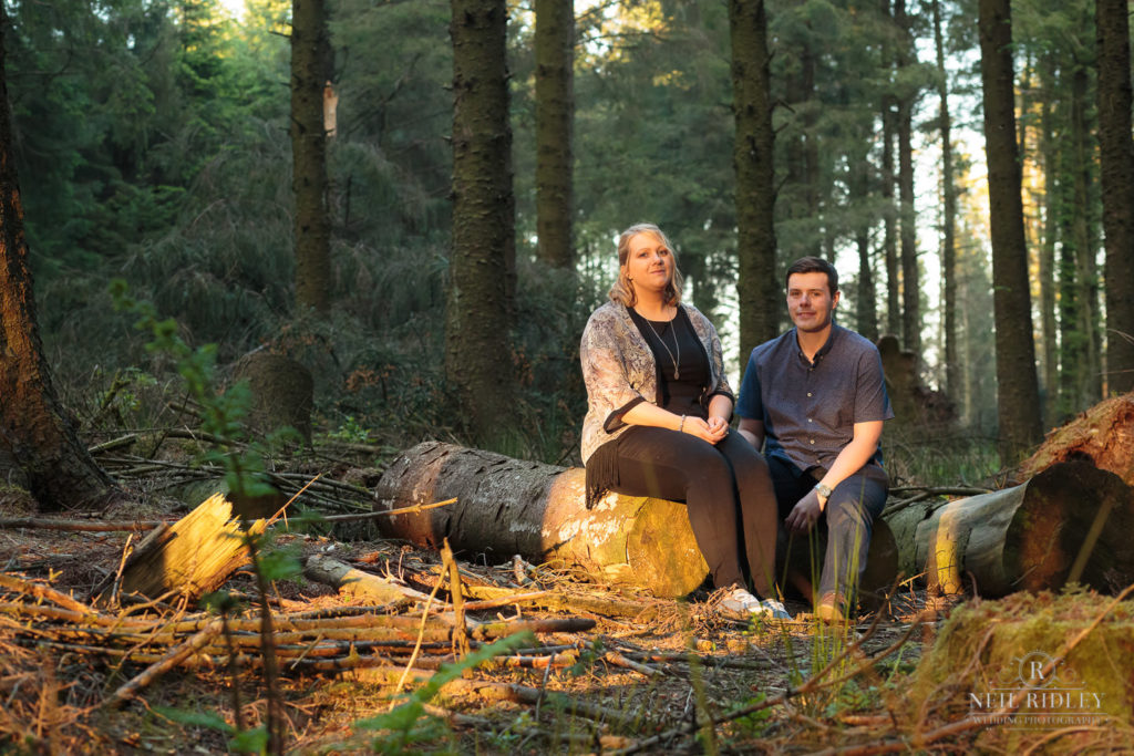 Lancashire Pre Wedding Shoot at Beacon Fell, Young couple in a forest sat on a log